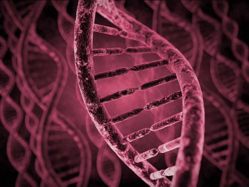 Nutrigenética: ¿cómo puede afectar la nutrición en las enfermedades de origen genético?